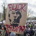 Коллегия выборщиков: формальность или последняя надежда противников Трампа?