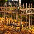 Kalmistul riisumata lehed viisid tülini