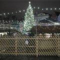 Linnavalitsus pani põhjapõtrade eksponeerimisele jõuluturul novembri lõpust jaanuarini käe ette