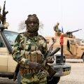 Niger ja Tšaad ründasid Boko Harami Nigeerias