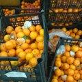 Mandariinid Rakvere Maksimarketis