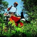 Страховая фирма: люди недооценивают риски летних видов спорта и работ в саду