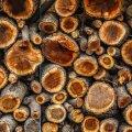 Возникшему в пандемию кризису стройматериалов конца не видно: цены на древесину зашкаливают