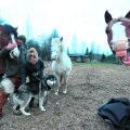 Paul Hunt, Marelle Mangus ning nende neljajalgsed sõbrad: Semu, Valge ja Heino esindavad hobuseid, Präänik koeri.