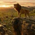 The Lion King (2019) - filmstill