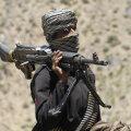 Talibani võitleja, 2016