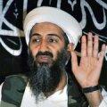 PÄEV TWITTERIS: Katke bin Laden betooniga, muidu hakkab Evelyn Sepp ta ülestõstmist nõudma