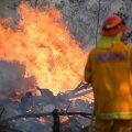Austraalia ralli loodetakse korraldada märkimisväärselt lühendatud trassil
