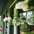 Rippuvad lillepurgid on ootamatu aiapeo kiire kaunistus