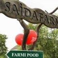 Saidafarmis valmib käsitööna ligi 200 tonni piimatooteid aastas