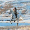 ФОТО   Ким Чен Ын поднялся на священную гору на белом коне