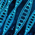 Vaimse tervise ja heaolu geeniuuringus on osalenud juba üle 50 000 geenidoonori