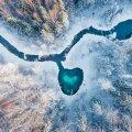 """Rahvusvahelise hiite kuvavõistluse peaauhinna saanud töö """"Metsa süda"""", autoriks Hans Markus Antson"""