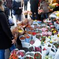 FOTOD | Head naistepäeva! Viru lilletänav upub õieostlejaisse