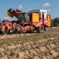 Lääne-Virumaa põllumehed Gustav ja Kulle Põldmaa soetasid ainulaadse kartulikombaini Grimme Varitron 270 Platinum, mille töökiirus võimaldab nüüd omanikel kartulipinda veelgi laiendada.