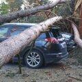 Omaniku vastutus autole langenud puuoksa eest sõltub sellest, kas omanikul oli kohustus see ilmselgelt kuivanud või murdumisohtlik oks õigeaegselt kõrvaldada.