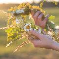 Maarahva kalender: juuni ehk pärnakuu pühad ja ajad