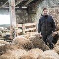 Valgamaa lambakasvataja Mats Meriste on loonud tulundusühistu, mis aitab väiketootjatel oma lambalihale ostjad leida.