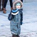 День независимости Эстонии отметят в каждом районе Таллинна
