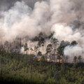 VIDEO | Siberis lõõmavad metsatulekahjud vähemalt 800 000 hektaril