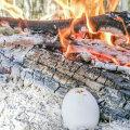 Munadepühad metsas! VAATA VIDEOTEST, kuidas muna lõkkel keeta ja küpsetada