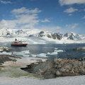 Petermanni saar Antarktika esisel. Foto: Cascoly