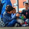 Lapspõgenikud