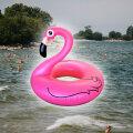 Мужчина на таллиннском пляже хотел догнать розового фламинго, но начал тонуть. Пришлось спасать его самого