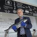 Mati Vetevool, mees, kes on lõhe Eesti rahvakalaks kergitanud. Tema sõnul jõuab Norrast püütud kala Eesti poelettidele kolme päevaga.
