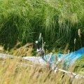 ФОТО | В Ярвамаа разбился насмерть мотоциклист