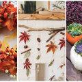 ФОТО | Своими руками: как создать осенний декор в доме, даже если вы не поклонник Хэллоуина