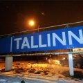 Tallinna silt