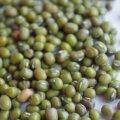 Väike eksperiment: Kuidas ma mungube kasvatasin