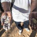 Näljahäda Tšaadis