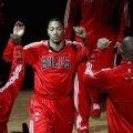 Derrick Rose, Chicago Bulls, NBA