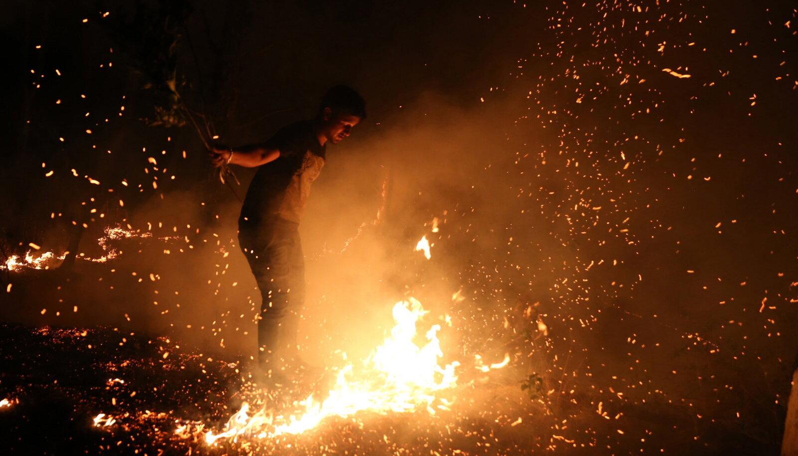 Maastikutulekahju Indias. Spetsialistide sõnul on sealsete tulekahjude sagenemise taga kliimamuutused