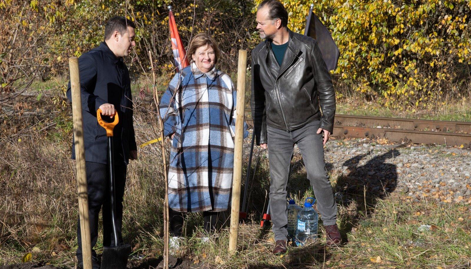PÖFFi parki Paljassaare poolsaarel istutati esimene puu