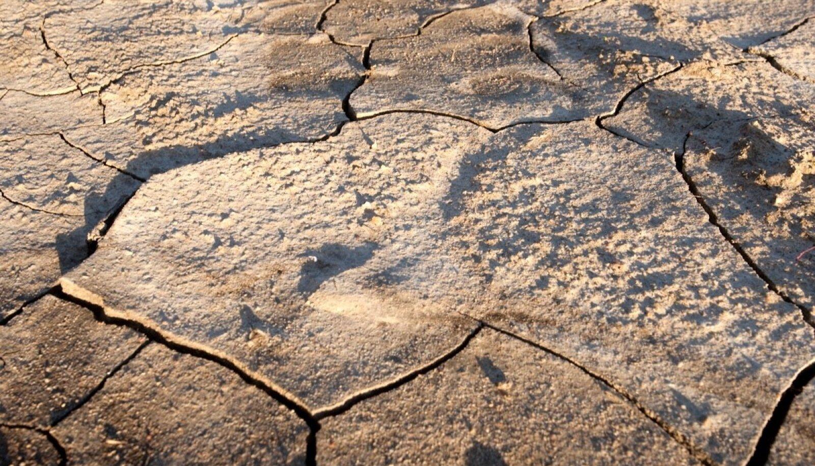 Põud ja toidupuudus on ühed aspektid, mis kliimasoojenemise tõttu inimesi ärvardab.