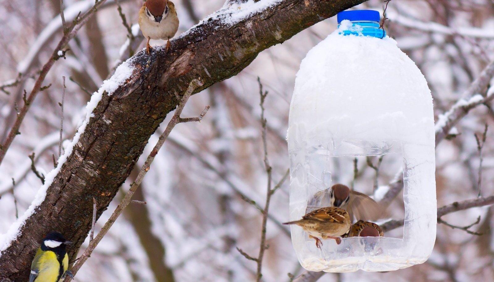 Kui kõht tühi, sobivad söögikohaks ühtviisi hästi nii plast- kui puumaja.