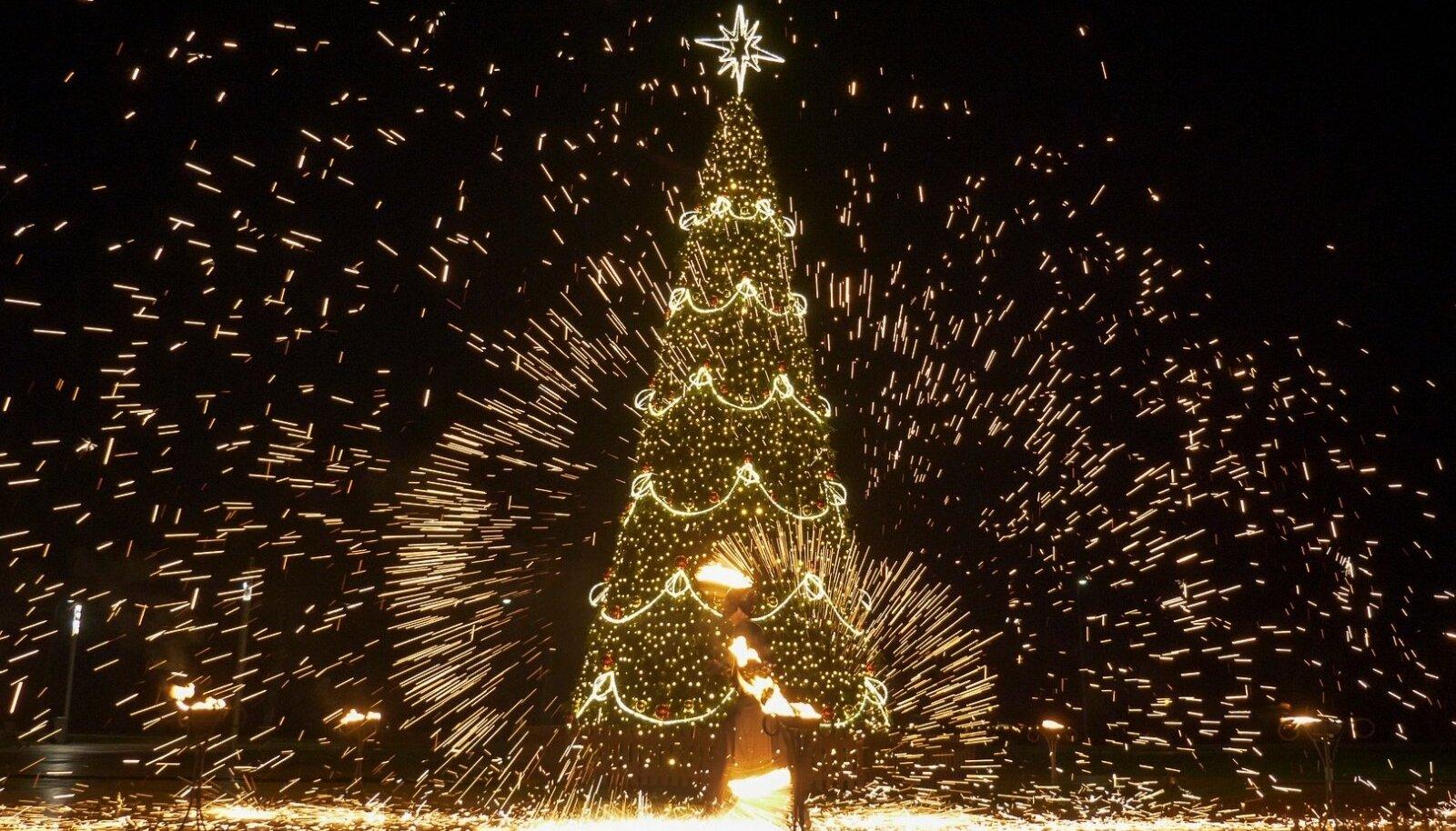 Leedu jõulupuud