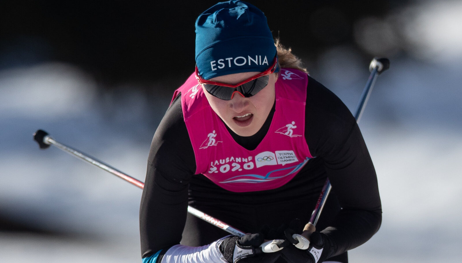 Johanna Udras