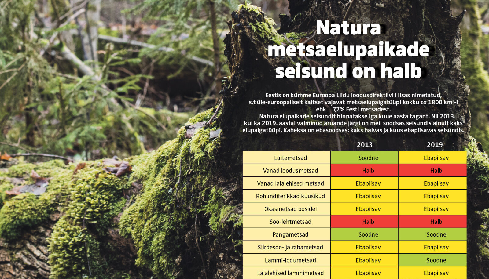 Plaanis on koostada ühine kaitsekorralduskava Natura 2000 alade kaitse-eesmärgiks olevate metsaelupaikade ja metsaliikide kaitseks ning viia looduskaitseseadusesse säte, mille alusel on võimalik tõhusamalt kaitsta väärtuslikke metsaelupaiku Natura 2000 aladel.