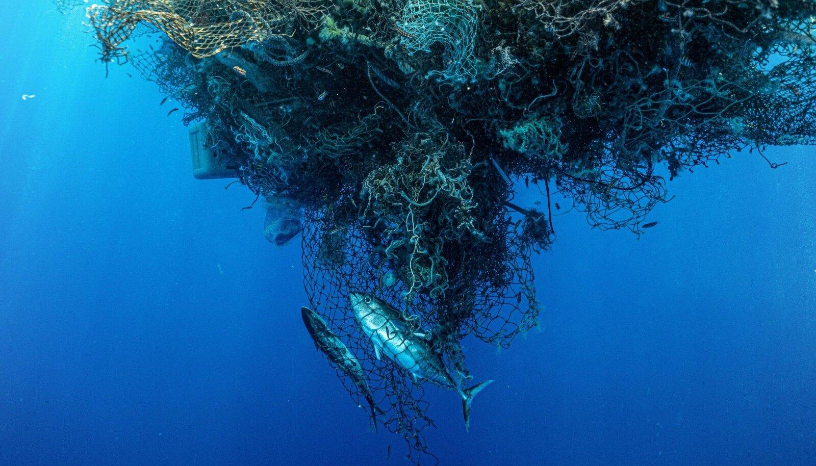 Üks filmi enim vastukaja tekitanud osa käsitleb mahajäetud kalavõrkude osakaalu mereprügis. Kuigi see ei pruugi olla nii suur, kui filmis väidetakse, on probleem reaalne ja oluline, sest neist saavad mereloomade lõksud ja nad lagunevad mikroplastiks.