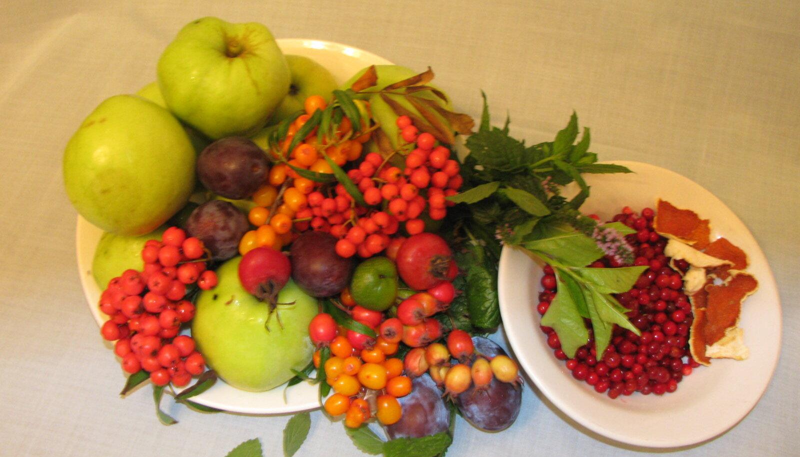 Õunad-marjad-maitsetaimed