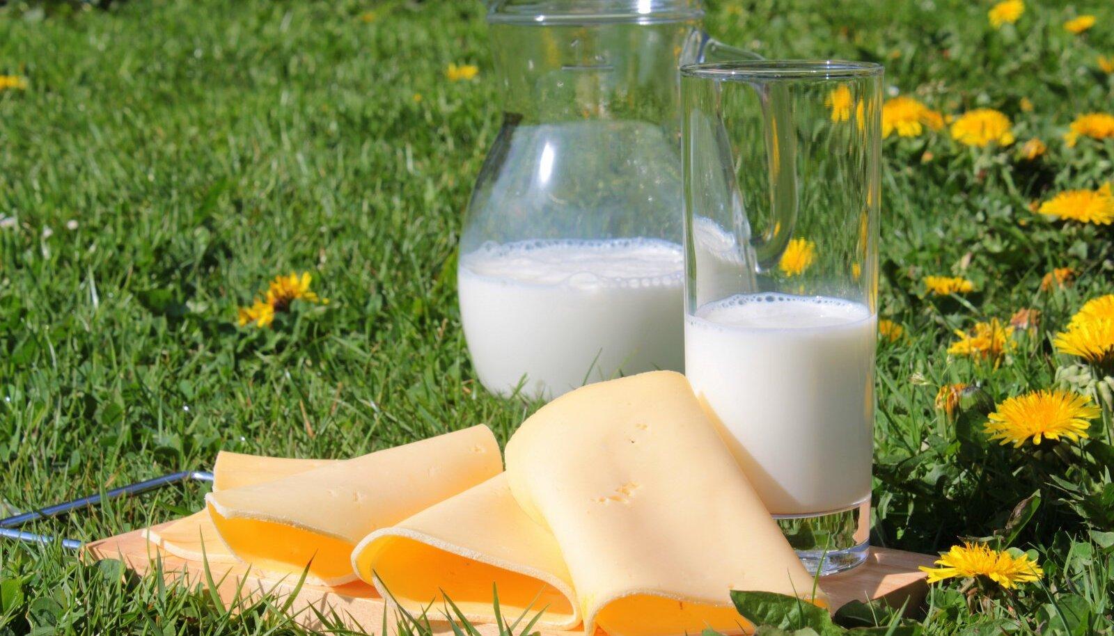 Kalciumát és fibrózist a prosztatában natural treatment for pleomorphic adenoma
