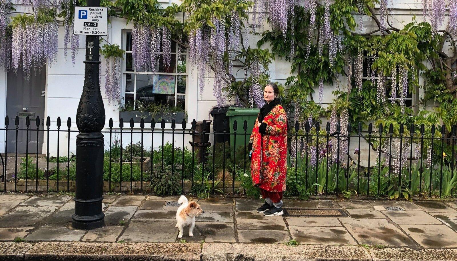 KOROONAAEG SUURLINNAS: Kunstnik Kadi Estland oma koera Kunstiga Londonis, kus kehtestatakse neljapäeval, 5. novembril kuu aega kestev lockdown.