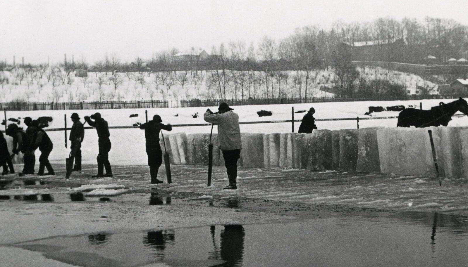 JÄÄLÕIKEPLATS EMAJÕEL: Jäävõtukohad olid sageli liiga laiad, aga jäätunud jõgi ei olnud ka lõbusõitudeks mõeldud.