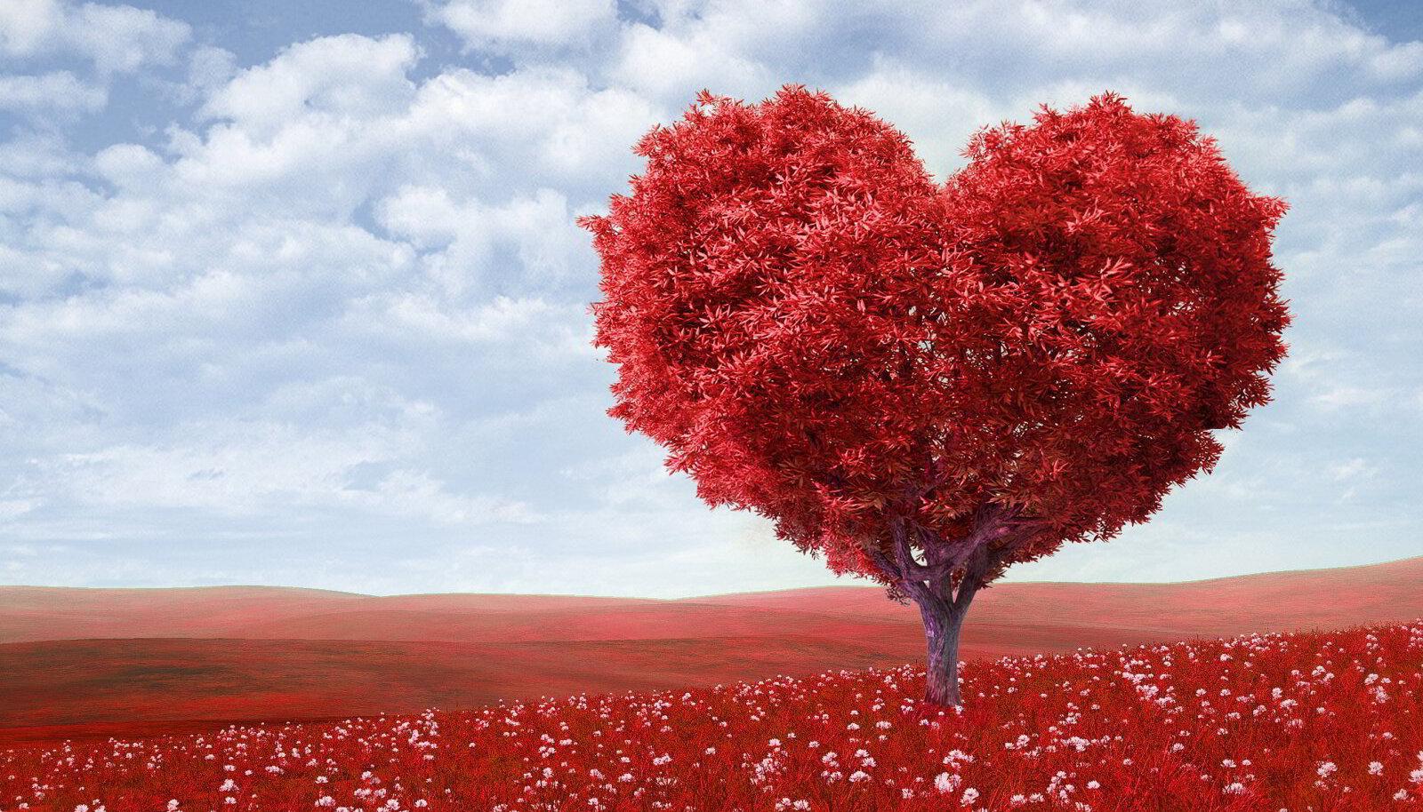 Lase end südamel juhatada