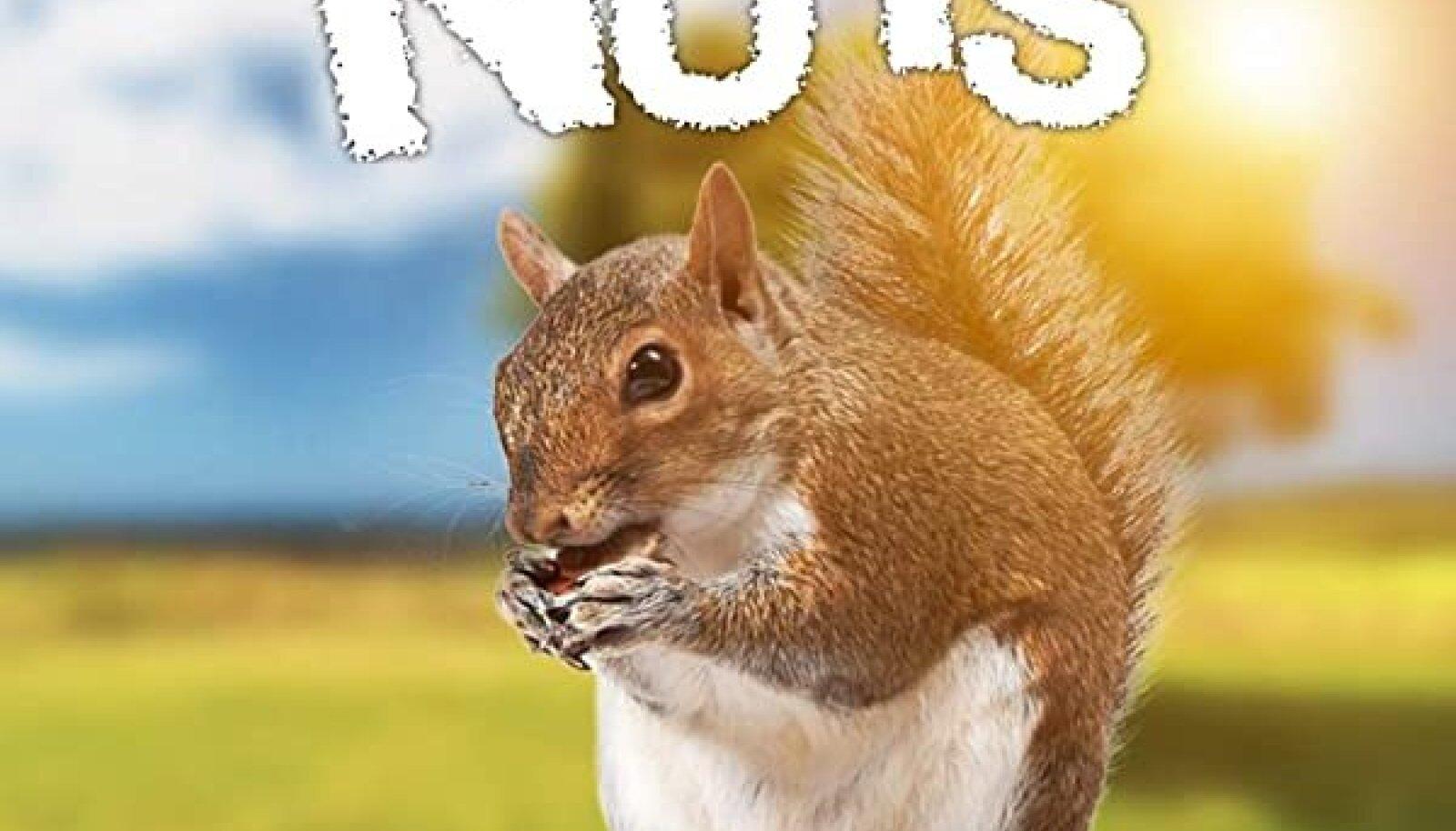 """""""Paras pähkel - lugusid oravamaailmast"""""""