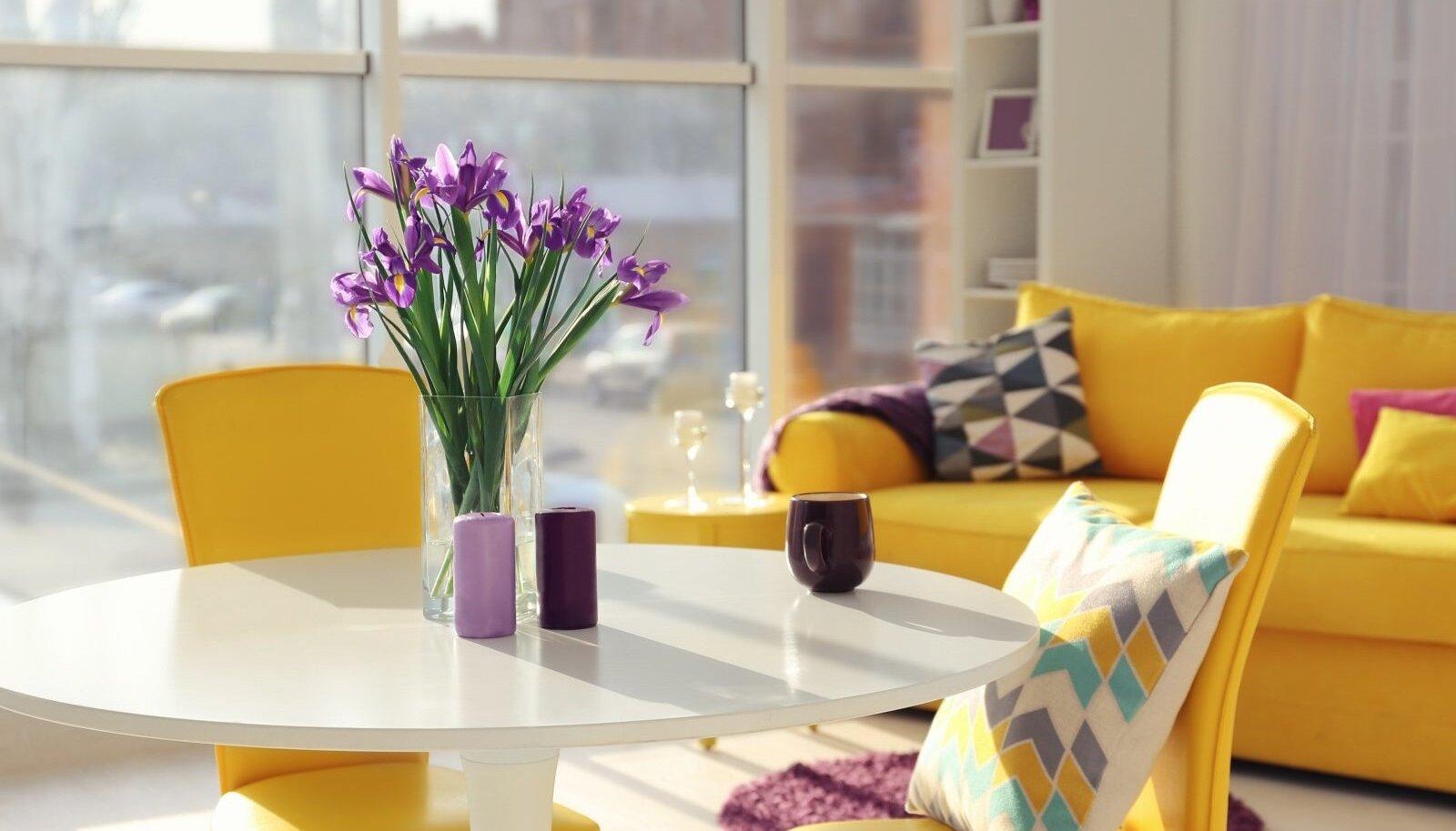 Гостиная Elutuba Shutterstock
